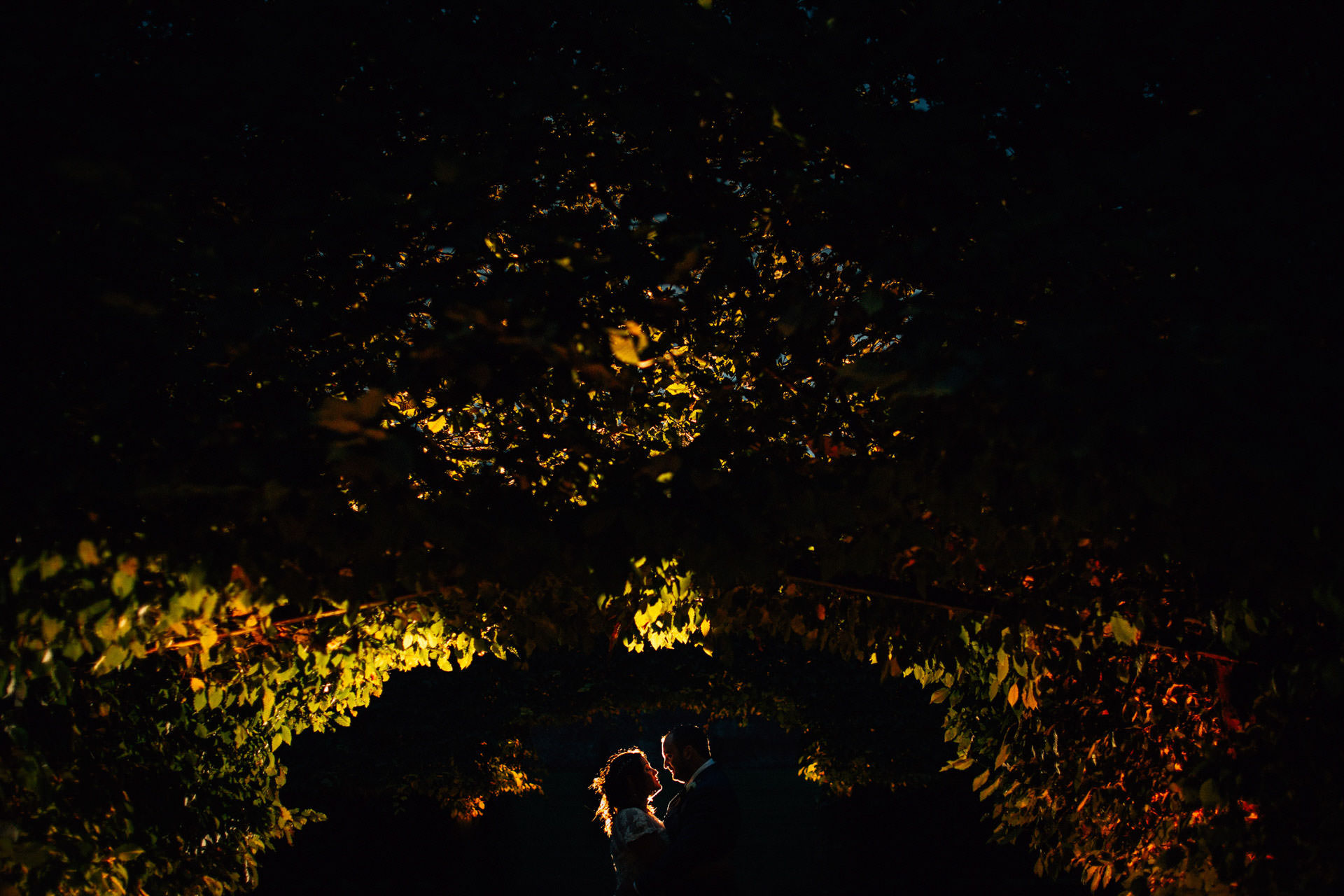 Best wedding photography 2016 - silhouette of couple in the bushes