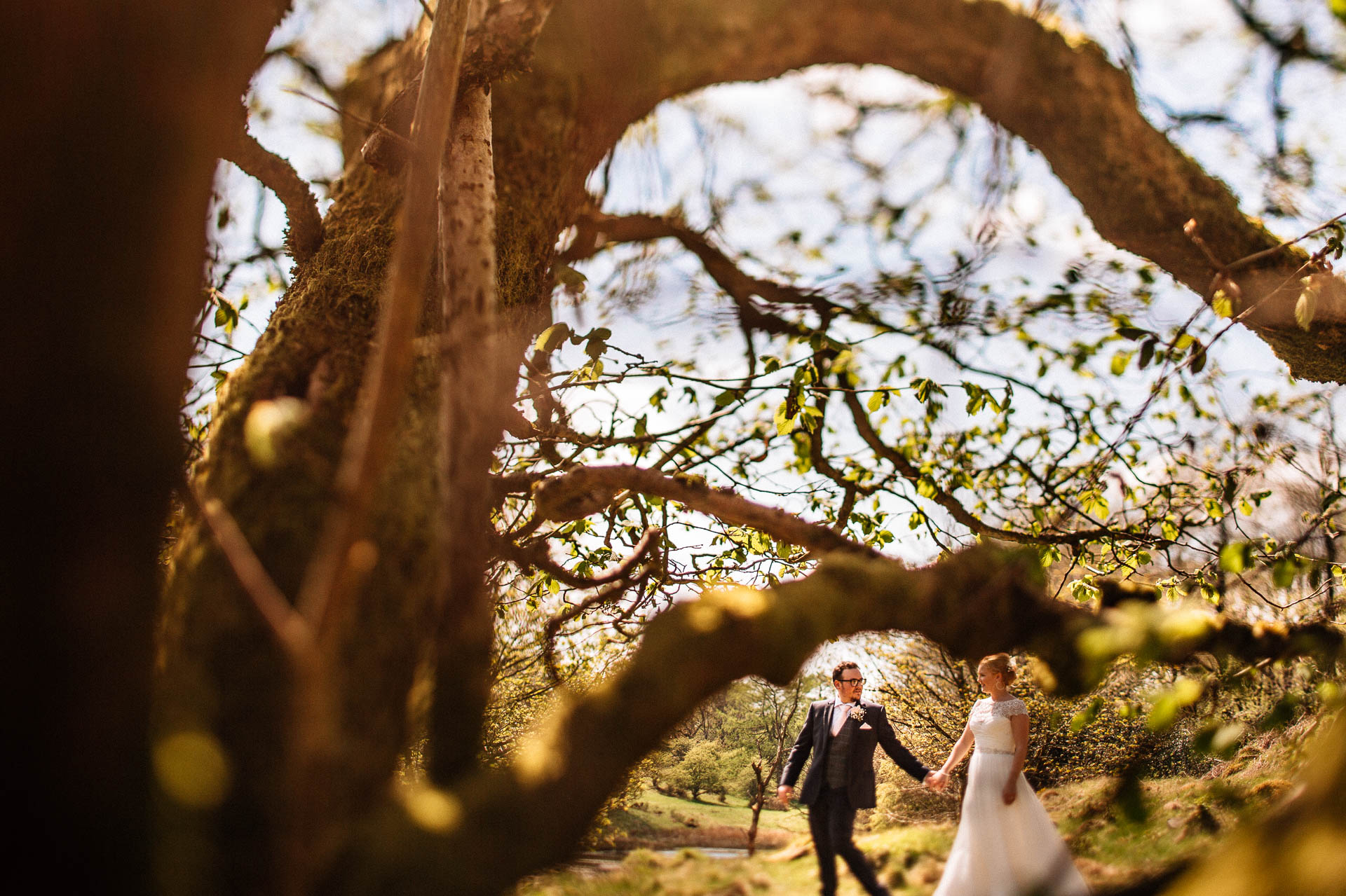 The Wild Boar Wedding Photography - EM - wide shot of couple through trees