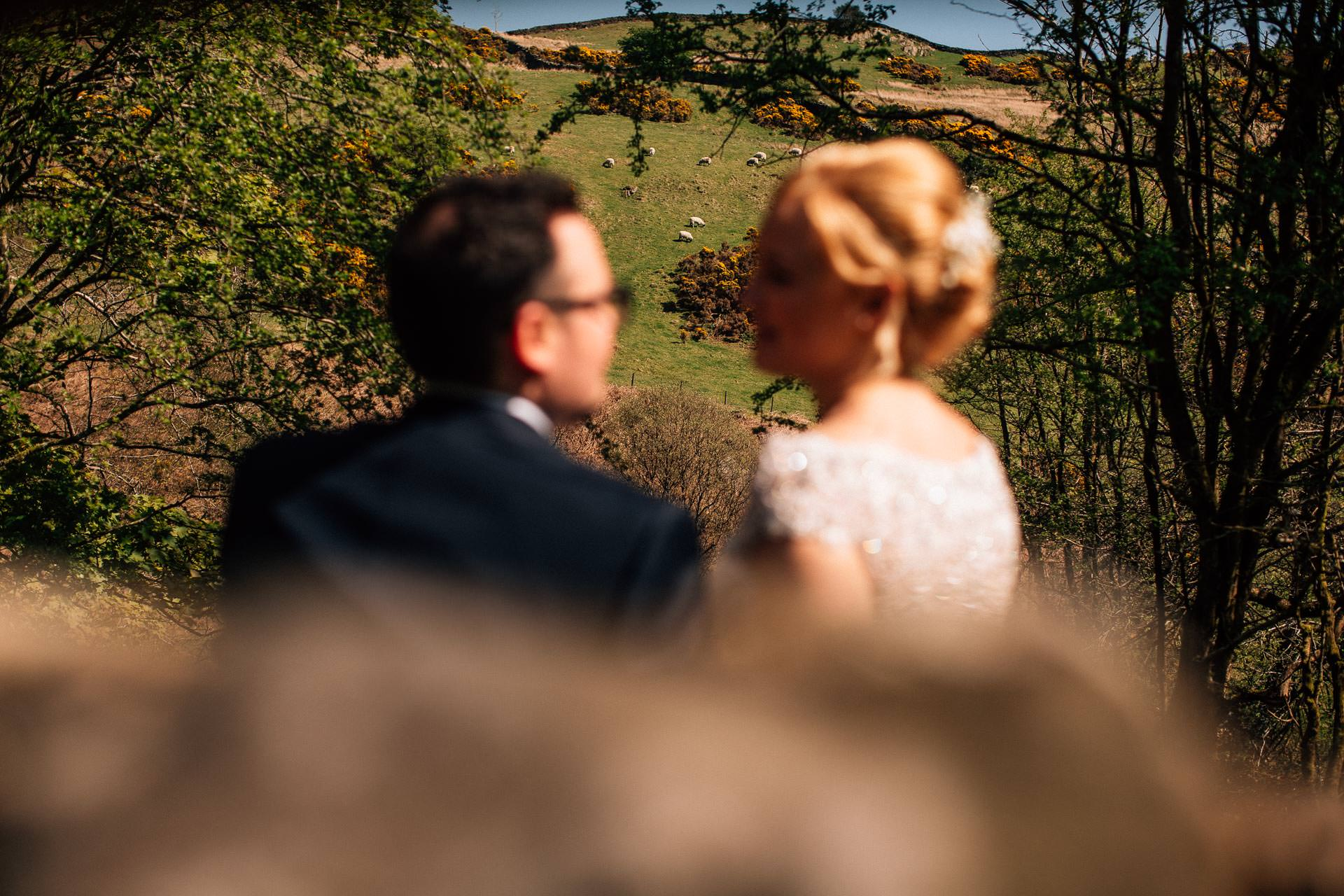 The Wild Boar Wedding Photography - EM - couple with sheep in background
